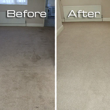 Extreme carpet cleaning – Stockton