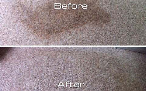 Coffee stain on carpet removed